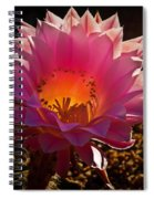 The Pink One Spiral Notebook