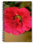 The Red One Spiral Notebook
