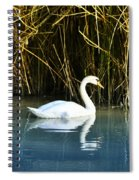 The White Swan Spiral Notebook