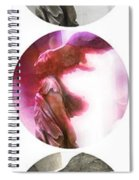The Winged Victory - Paris - Louvre Spiral Notebook