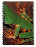 Tiger-striped Monkey Frog Spiral Notebook