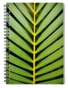 Tropical Palm Frond Spiral Notebook