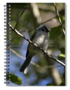 Tufted Titmouse 2 Spiral Notebook