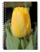 Tulip Named Big Smile Spiral Notebook