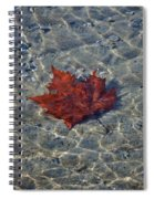 Under Water Spiral Notebook