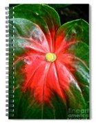 Vibrant Spiral Notebook