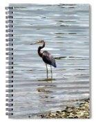 Wading Heron Spiral Notebook