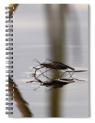 Water Skaters Spiral Notebook