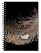 Wet Feather Spiral Notebook