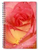 Wet Rose Spiral Notebook