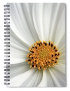 White Cosmos Spiral Notebook
