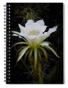 White Echinopsis Flower  Spiral Notebook