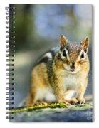 Wild Chipmunk Spiral Notebook