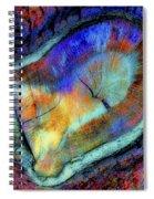 Wild Wood Spiral Notebook