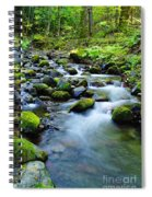 Winding Through The Rocks  Spiral Notebook