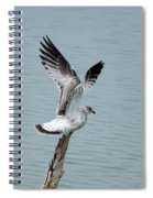Wings Up Spiral Notebook