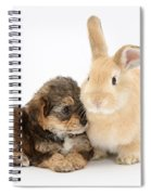 Yorkipoo Pup With Sandy Rabbit Spiral Notebook
