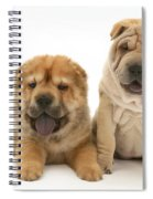 Young Dogs Spiral Notebook