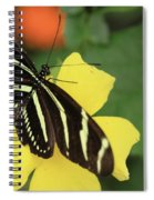 Zebra Longwing Spiral Notebook