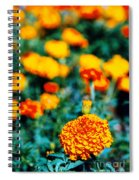 Zinnias Spiral Notebook