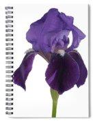 Blue Iris Blooming Spiral Notebook