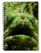 Frogfish Spiral Notebook
