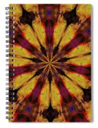 10 Minute Art 120611 Spiral Notebook