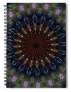 10 Minute Art 120611a Spiral Notebook