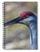10- Sandhill Crane Spiral Notebook