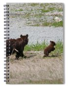 Black Bear Family Spiral Notebook