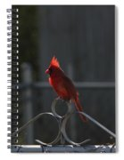 1417 Fenced In Spiral Notebook