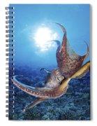 Hawaii, Day Octopus Spiral Notebook