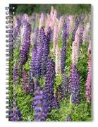 A Field Of Lupins Spiral Notebook