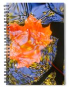 Autumn Leaf On The Water Spiral Notebook