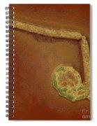 Avian Influenza A H5n1 Spiral Notebook