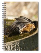 Bird Bath Fun Time Spiral Notebook