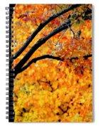 Blaze Spiral Notebook