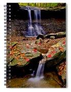 Blue Hen Falls Spiral Notebook