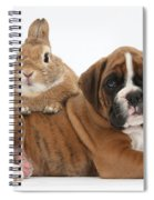 Boxer Puppy And Netherland-cross Rabbit Spiral Notebook
