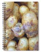 Bumblebee Nest Spiral Notebook