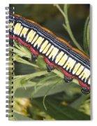 Caterpillar Spiral Notebook