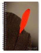 Cedar Waxwing Feather Spiral Notebook