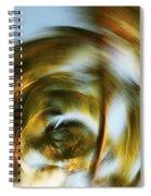 Circular Palm Blur Spiral Notebook