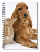 Cocker Spaniel And Rabbit Spiral Notebook