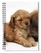 Cockerpoo Puppy And Rabbit Spiral Notebook