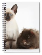 Colorpoint Rabbit And Siamese Kitten Spiral Notebook