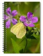 Common Brimstone Spiral Notebook
