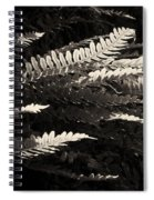 Common Polypody Spiral Notebook