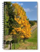 Country Road And Autumn Landscape Spiral Notebook