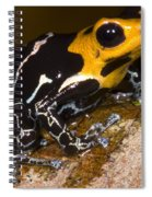 Crowned Poison Frog Spiral Notebook